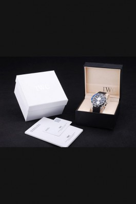 IWC Top Replica 8266 Strap Watch Case